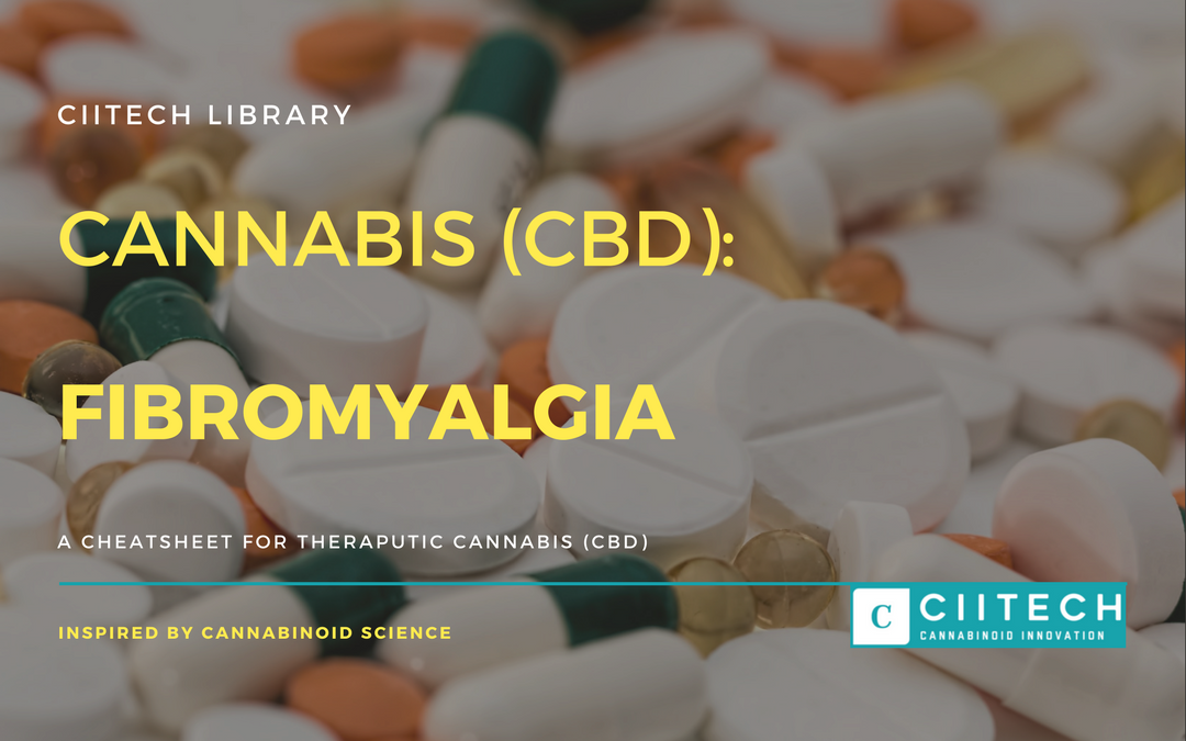 CBD Cheat-sheet: Cannabis and Fibromyalgia