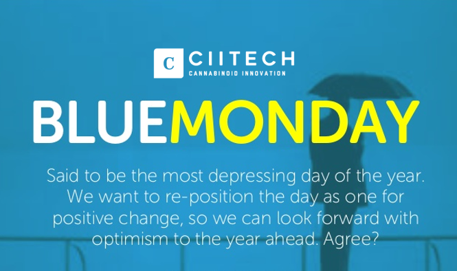 Blue Monday, tricks and tips to avoid depression
