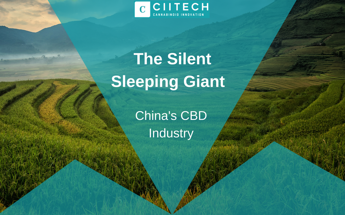China Hemp CBD Industry: The Silent Sleeping Giant