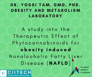 A study into the Therapeutic Effect of CBD for obesity induced Nonalcoholic Fatty Liver Disease NAFLD