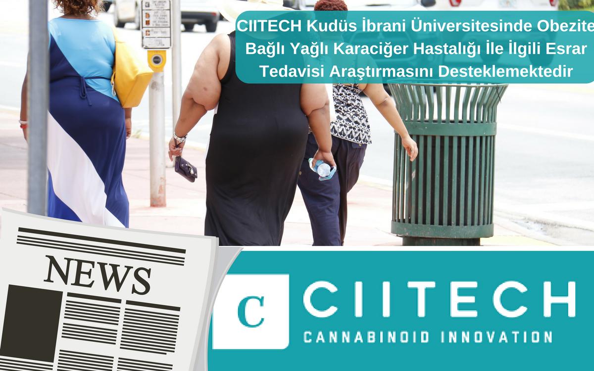 CIITECH Kudüs İbrani Üniversitesinde Obezite Bağlı Yağlı Karaciğer Hastalığı İle İlgili Esrar Tedavisi Araştırmasını Desteklemektedir