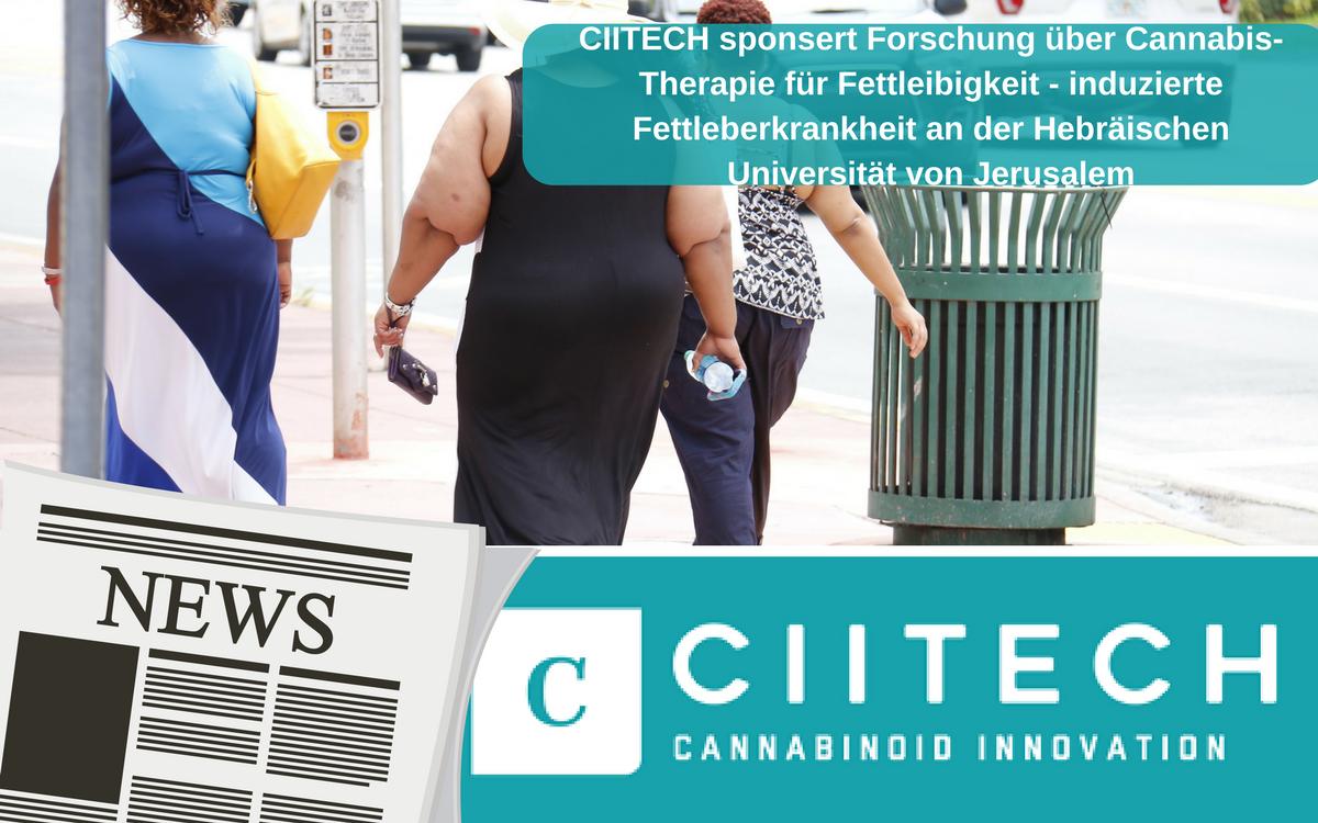 CIITECH sponsert Forschung über Cannabis-Therapie für Fettleibigkeit – induzierte Fettleberkrankheit an der Hebräischen Universität von Jerusalem