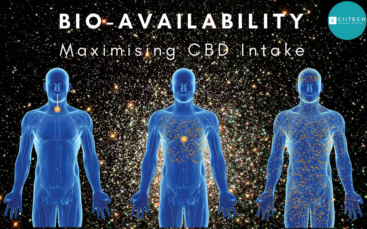 How to Maximise CBD Bio-availability