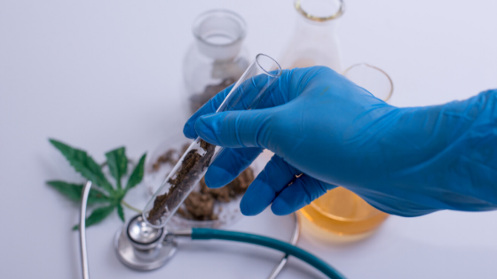 Clinical trials on CBD