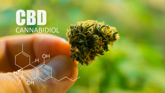 How safe is CBD oil?