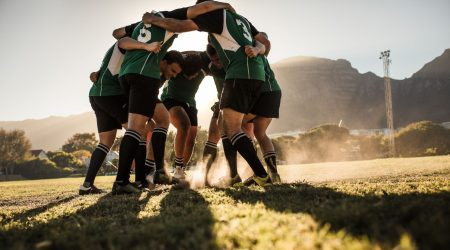 ciitech SA rugby south africa